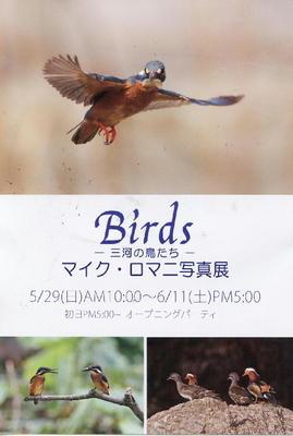 PHOTO001.JPG